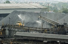 Coal imports surge during the COVID-19 pandemic