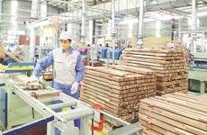 Wood processing to become spearhead economic sector by 2025