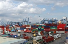 Cargo throughput of seaports still maintains growth in eight months