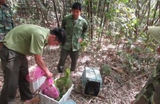 Vietnam hailed for strides in protecting people, biodiversity