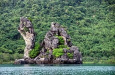 Quang Ninh enjoys potential for forestry tourism development