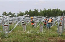 Binh Phuoc's biggest solar power project to join national grid in December