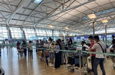 Over 250 Vietnamese citizens brought home from RoK