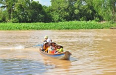 Farmers in Mekong Delta attend floating English class