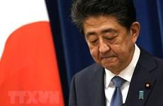 PM Abe Shinzo contributes greatly to Vietnam-Japan ties: Spokeswoman