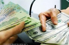 Reference exchange rate down 5 VND at week's beginning