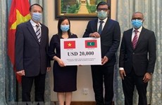 Vietnam offers aid to Maldives to battle COVID-19
