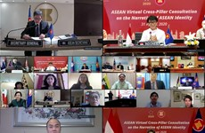 Virtual consultation looks into ASEAN Identity Narrative