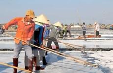 Salt industry development plan for 2021-2030 approved
