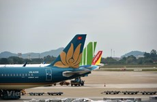 Airline service fees reduced by half for next six months
