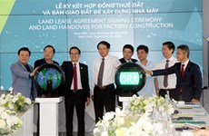Nam Dinh's IP welcomes projects