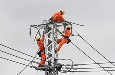 Power sector seeking ways to grow further