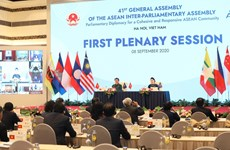 AIPA-41 holds first plenary session