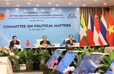AIPA Committee on Political Matters holds online meeting