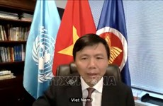 Vietnam backs UN – OIF cooperation: ambassador