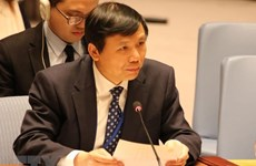 Vietnam calls for all-level implementation of UNSC's youth, peace, security resolutions