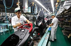 Honda Vietnam's motorbike sales down, auto sales up in August