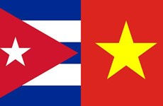 Painting competition launched to mark Vietnam-Cuba diplomatic ties