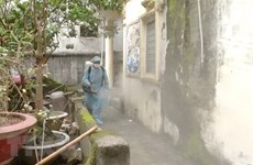 Dengue fever cases likely to rise: Health Ministry