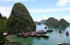 Quang Ninh cuts sight-seeing fees till year's end