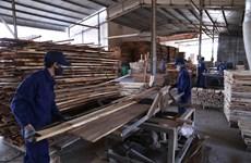 Binh Dinh's wood exports surge 21 percent despite pandemic