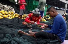 Malaysia: Allowance for fishermen bumped up to 300RM