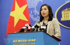 Vietnam ready to share CPTPP information with UK: Foreign Ministry spokesperson