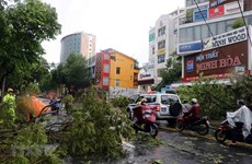 Red Cross increases emergency stockpiles in response to Typhoon Noul