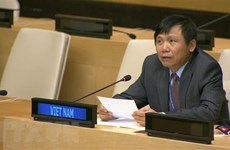 National defence tradition makes Vietnam's success at UN: Ambassador