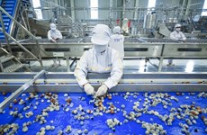 Fresh fruit-herb processing factory comes into operation in Son La