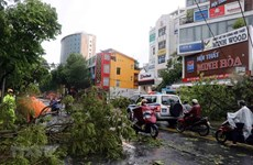Lao PM sends sympathy to Vietnam over losses caused by storm Noul