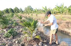 India funds seven water projects in Mekong Delta