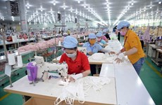 Vietnam exports 850 million masks in eight months