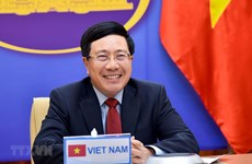 Vietnamese, Saudi Arabian FMs seek ways to foster bilateral ties