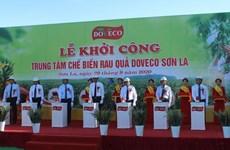 Construction begins on big fruit processing complex in Son La