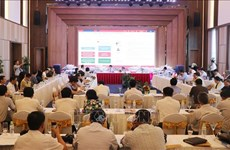 Expanded road transport plays part in Vietnam's economic growth: forum