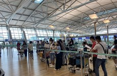 More than 250 Vietnamese citizens brought home from RoK