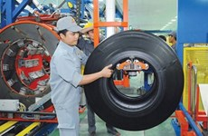 Vietnam Rubber Group to expand tyre production via M&A