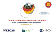 ASEAN summit discusses inclusive business