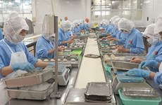 Vietnam likely to earn 300 billion USD in exports this year