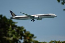 Singapore Airlines to gradually increase flights