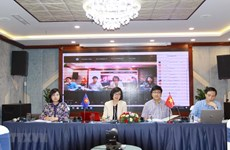 Vietnam holds national consultation on promoting social work in ASEAN