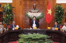 Deputy PM meets Vietnam-ASEAN Association for Economic Cooperation Development delegation