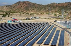Vietnam's solar farms attract Thai investors