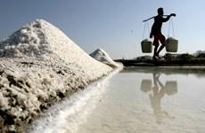 Indonesia seeks way to cut down salt imports