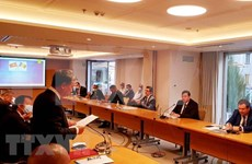 Workshop highlights Vietnam – Romania friendship