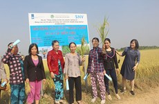 Dutch-funded project empowers women in Binh Thuan