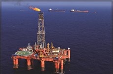 PetroVietnam's oil output reaches 8.64 million tonnes