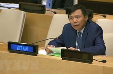 Vietnam, Indonesia call for comprehensive approach to issues in Mali