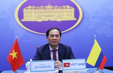 Vietnam, Colombia hold fifth deputy ministerial-level political consultation
